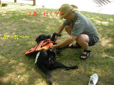 2009-05-09_SANY0053_2.jpg