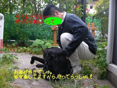 2009-05-30_SANY0025_4.jpg