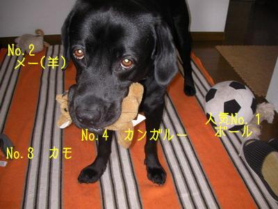 2009-06-05_SANY0029_2.jpg