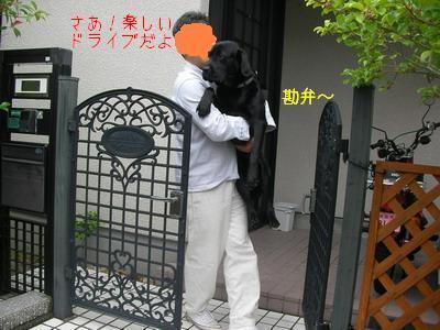 2009-06-06_SANY0038_3.jpg
