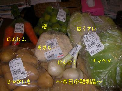 2009-06-06_SANY0069_2.jpg