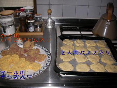 2009-06-09_SANY0001_2.jpg