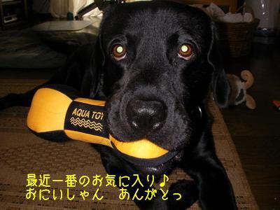 2009-06-13_SANY0053_2.jpg