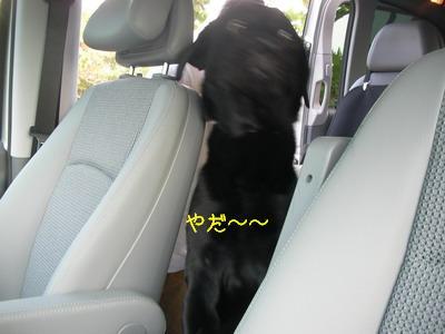 2009-06-14_SANY0085_2.jpg
