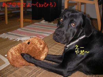 2009-06-16_SANY0174_2.jpg