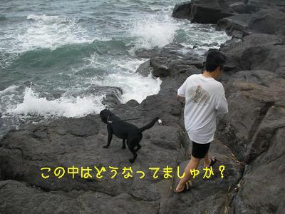 2009-06-19_SANY0048_2.jpg