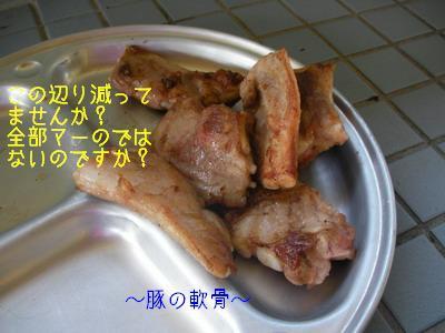 2009-06-19_SANY0074_2.jpg