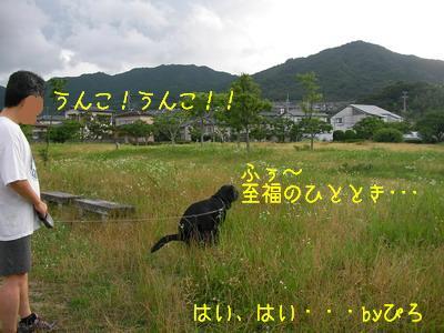 2009-06-28_SANY0040_2.jpg