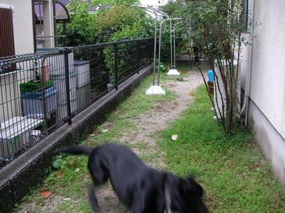 2009-06-30_SANY0133.jpg