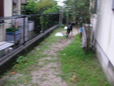 2009-06-30_SANY0135.jpg