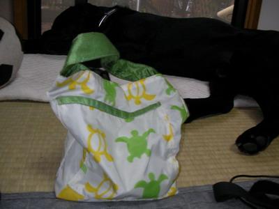2009-07-03-2_SANY0003.jpg