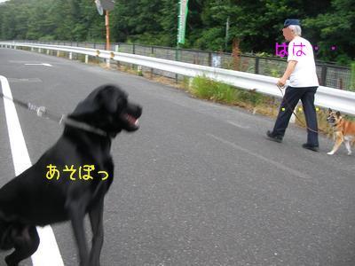 b_2009-06-27_SANY0108_2.jpg