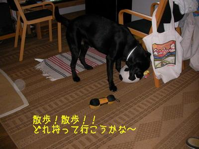 b_2009-06-28_SANY0034.jpg