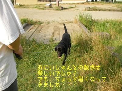 b_2009-06-28_SANY0042.jpg