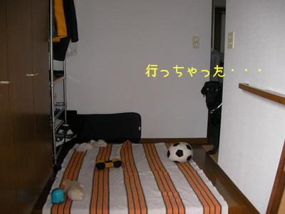 b_2009-07-03_SANY0027.jpg
