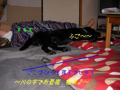 b_2009-07-05_SANY0020.jpg