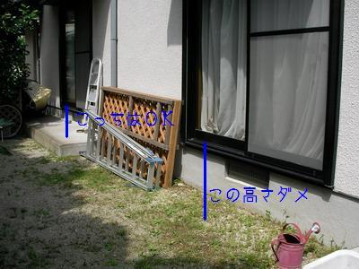 b_2009-07-12_SANY0014.jpg