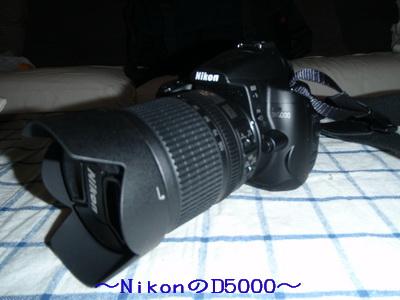 b_2009-07-30_P7300005.jpg