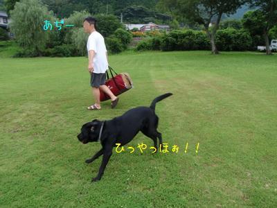 b_P7170037.jpg