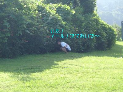 b_P7180146.jpg