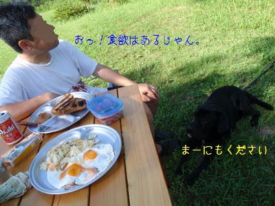 b_P7180150.jpg