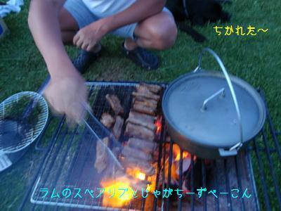 b_P7180297.jpg