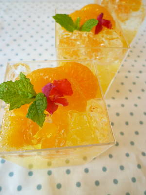 オレンジゼリーH23・1