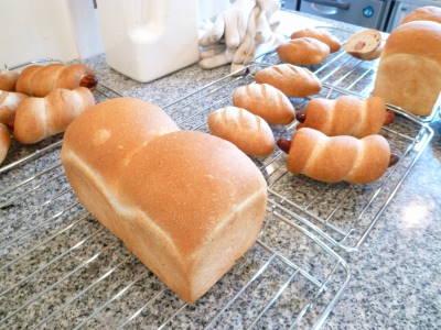パン胚芽1