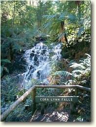 coralynn_falls_1.jpg