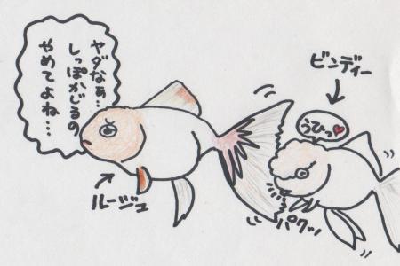 ビンディ&ルージュ(がじがじ編)2