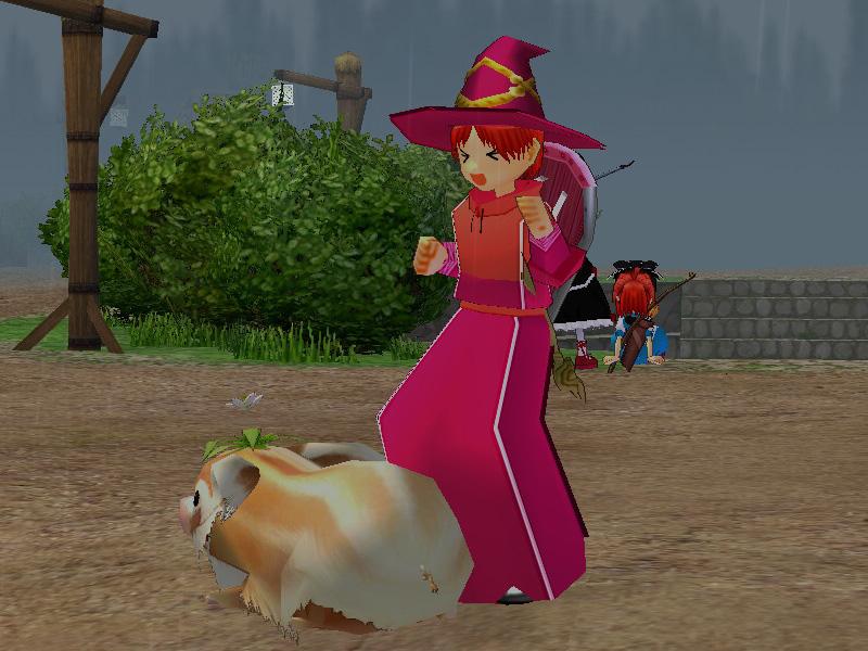 ハーブ豚から草むしり