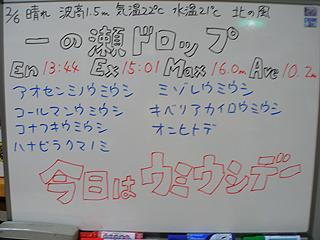 110206bloga.jpg