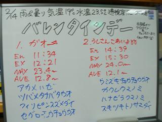110214bloga.jpg