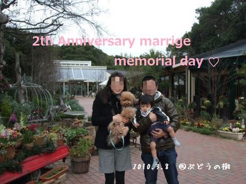 DSCF2640_convert_20110214144904mozaiku.jpg