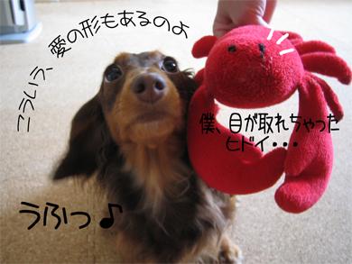 ai_20080818150106.jpg