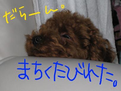 IMG_0038-2.jpg