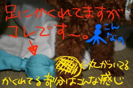 IMG_0622-1.jpg