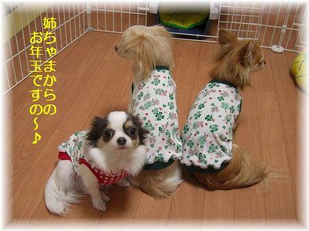続・お年玉2009☆