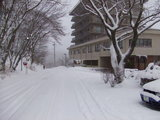 積雪12月31日夕方