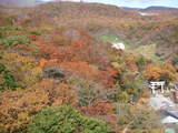 紅葉神社20071028