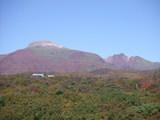 紅葉2007102501