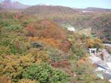 紅葉神社20071025