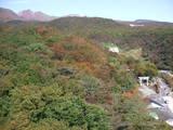 紅葉神社20071022