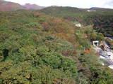 紅葉神社20071020