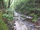 乙女の滝5