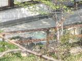 20070509芭蕉の足湯