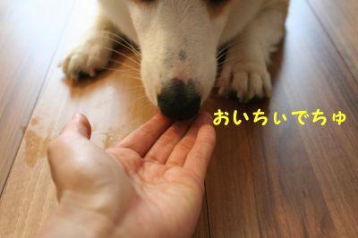 20090621-10_400.jpg