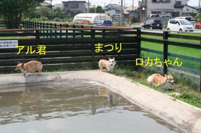 20090622-5_400.jpg