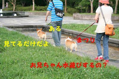 20090713-8_400.jpg