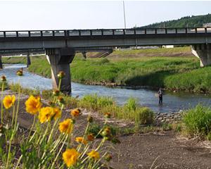 20090607鮎釣り